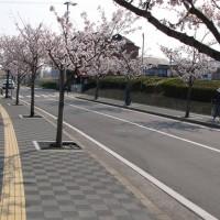 魚住歩道(明石市/ハートランドペイブ透水)