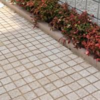 ピンコロサビミカゲのような明るい舗装材ストーンパーク