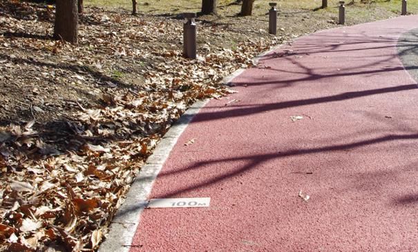 ポーアイ南公園-ジョギングコース(神戸市)